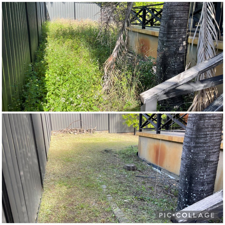 Green Waste Removal and Yard Clean up Before and After