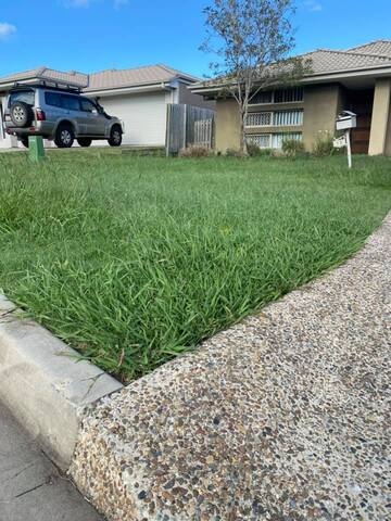 Lawn Mow before