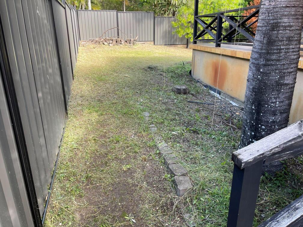 Yard Clean up after